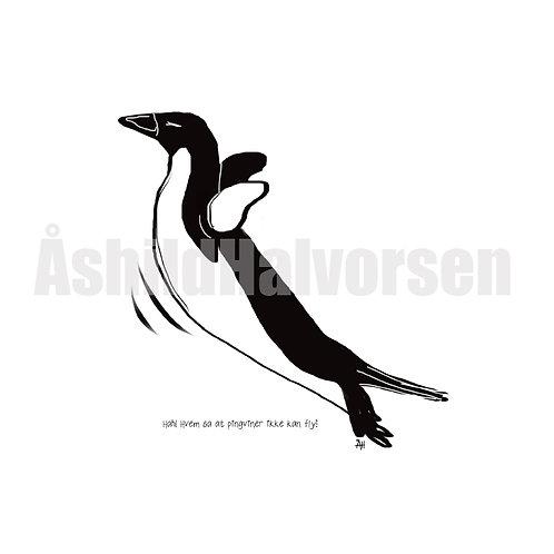 49 Pingu