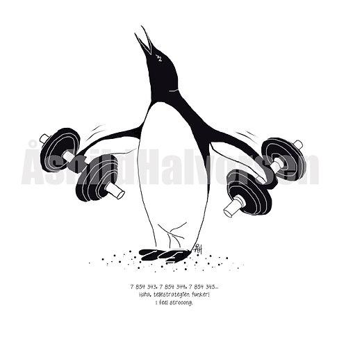 11 Pingu