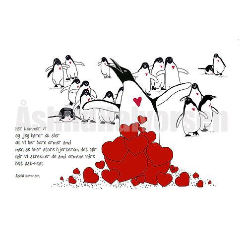 Pingudikt 05