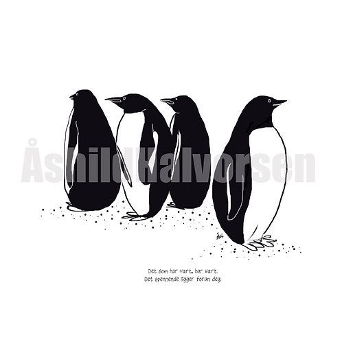 14 Pingu