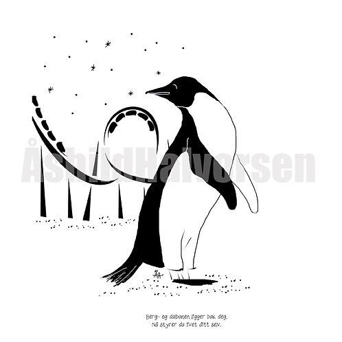 43 Pingu