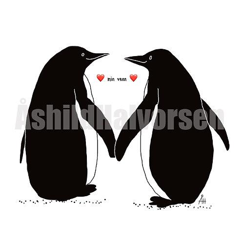 Pingu 53 - A4