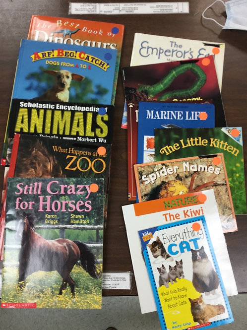 Cats spider birds worms horses zoo animal science