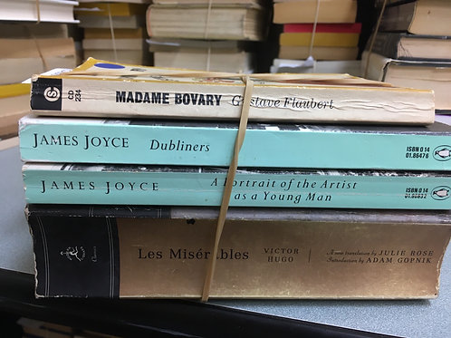 Classic James Joyce Les Miserables Madame Bovary