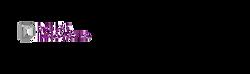 Dallas Inovates Logo