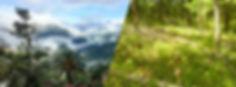 Bandeau-site-bolivie-France.jpg