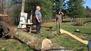 [Article] Lavercantière (Lot) la Forêt, une filière à valoriser - La Dépêche