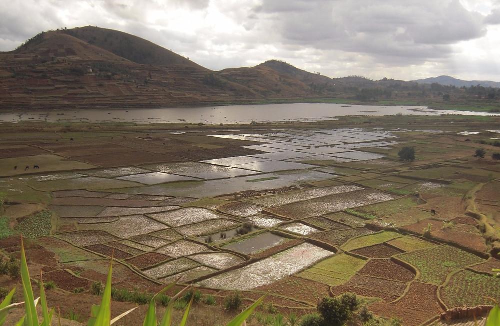 Paysage Madagascar Antsirabe