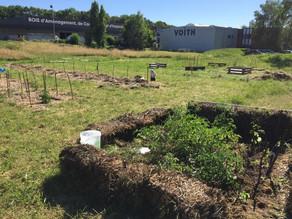 [Fermé] Volontariat - Coordination d'un jardin collectif, permacole et pédagogique