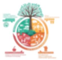 Ecosysteme-CDF-2020 (Web).jpg