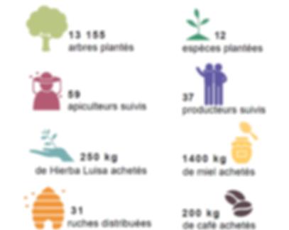 Rapport annuel projet Bolivie, Coeur de foret