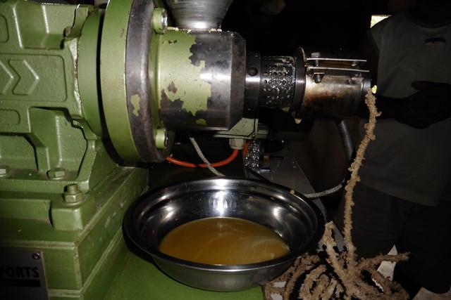 Mm-presse-huile-moringa (Web)