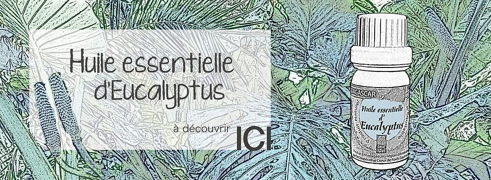 Huile essentielle d'Eucalyptus / Filière équitable Coeur de Forêt