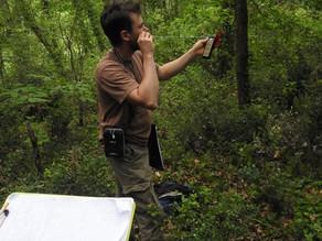 [Portrait] François CAZÈS, conseiller forestier partenaire dans le Lot