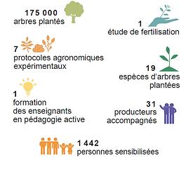 Rapport annuel projet Madagascar, Antsirabe, Coeur de foret