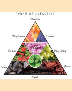 Pyramide olfactive Tundzha