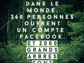 [Article] Et si la déforestation avait lieu en plein Paris ? - La Réclame