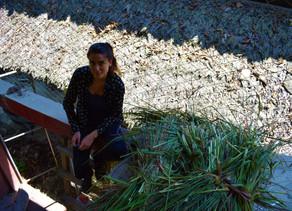 [Que sont-ils devenus ?] Au cœur de la Bolivie, avec Clémentine, ancienne volontaire pour l'asso