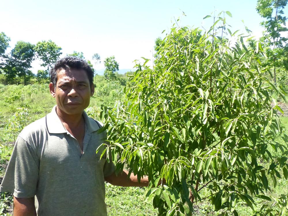 Interview Bruno Stefanus Coeur de Forêt Indonésie