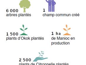 [Rapport Annuel] Bilan 2019 - Projet Cameroun