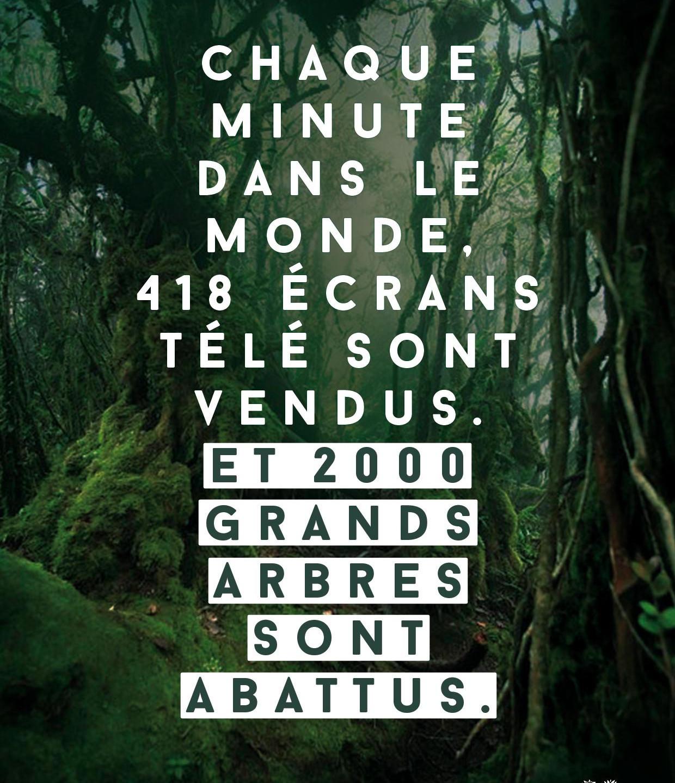 Josiane_pour_Coeur_de_forêt_3