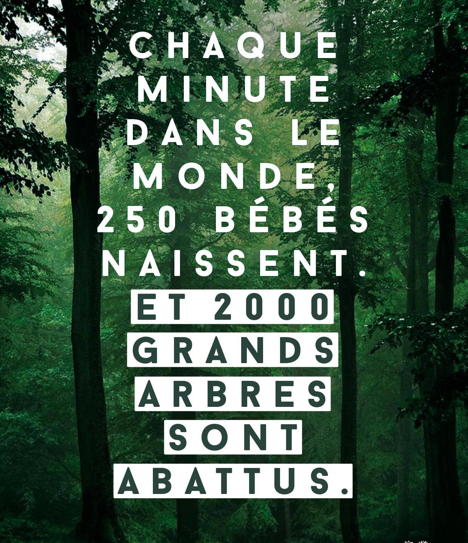 Josiane_pour_Coeur_de_forêt_1