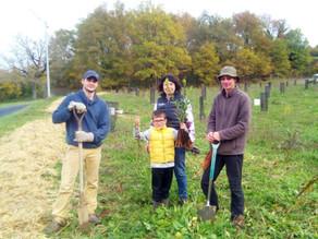 [Article] Cœur de Forêt achève ses plantations à Saint-Cirq-Madelon - La Dépêche