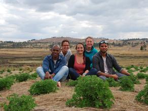 Volontariat Madagascar : Appui recherche agronomique