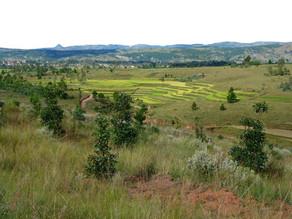 [Rapport] Bilan 1er semestre 2018 à Madagascar Antsirabe
