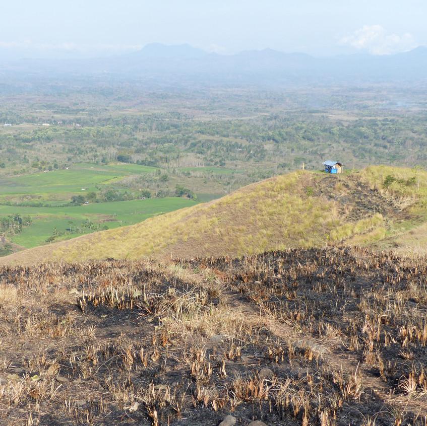 Projet Coeur de Forêt Indonésie