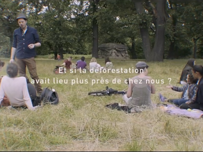 Et si la déforestation avait lieu près de chez nous ?