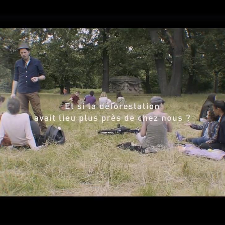 Votez pour la campagne de communication Coeur de Forêt