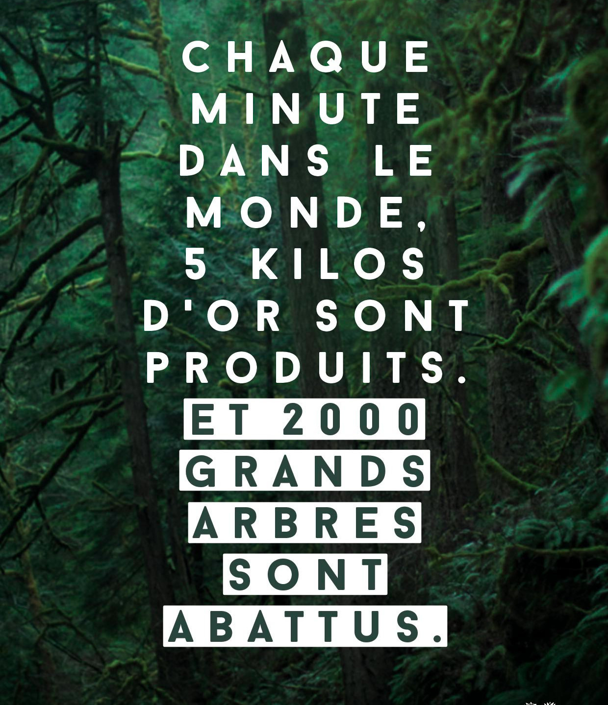 Josiane_pour_Coeur_de_forêt_4