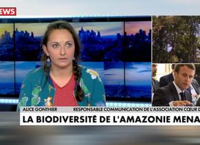 [Vidéo] Raoni à l'Elysée, déforestation et élections européennes. Coeur de Forêt chez CNEWS.
