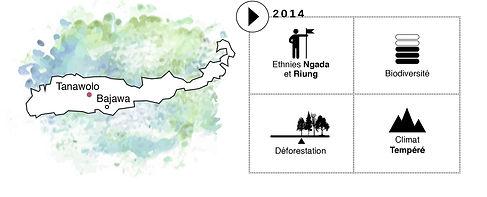 projet Indonésie Tanawolo, Coeur de Forêt, carte d'identité, déforestation, reforestation
