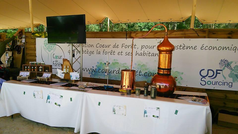 Coeur de Forêt au Rainforest Festiva