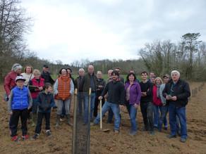 Volontariat Projet France Forêt
