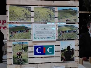 Le CIC Sud-Est plante 15000 arbres à Madagascar