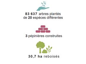 [Rapport Annuel] Bilan 2019 - Projet Madagascar-Masoala