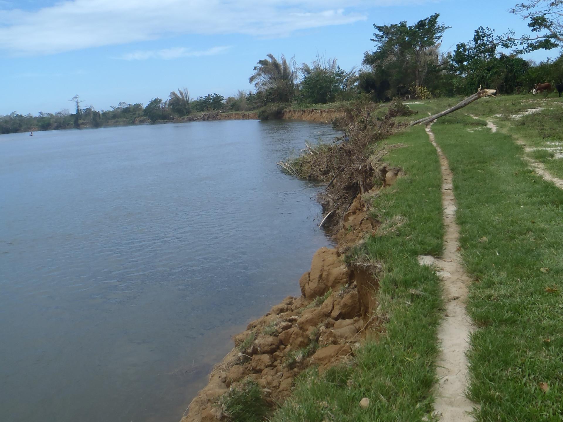 Littoral endommagé après cyclone
