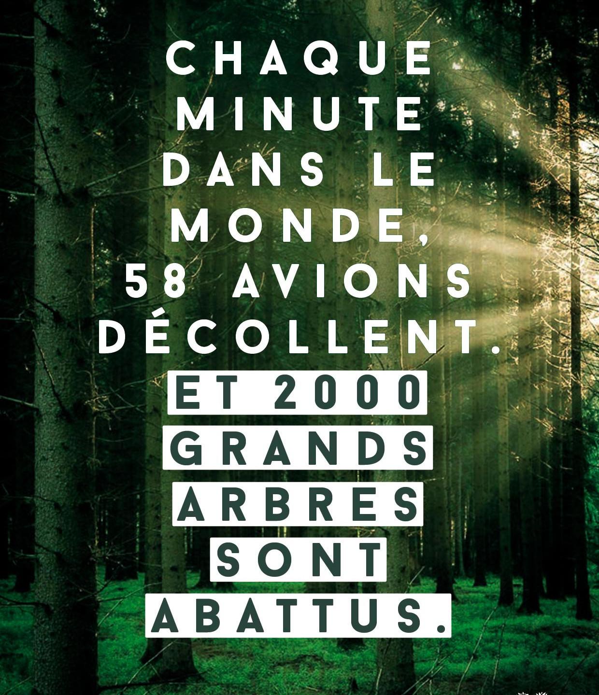 Josiane_pour_Coeur_de_forêt_2