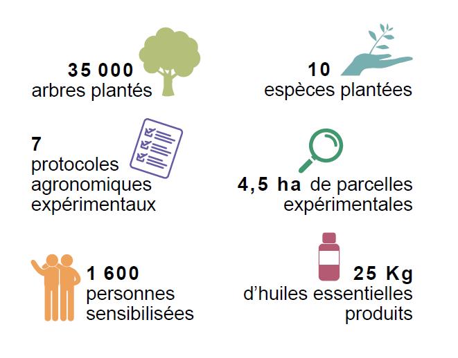 Indicateurs bilan projet Madagascar Antsirabe Coeur de Forêt 2018