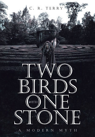 Two%2520Birds%2520with%2520One%2520Stone