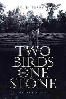 Two Birds with One Stone Book Cover.jpg