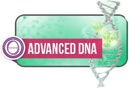 Advanced DNA Theta Healing®