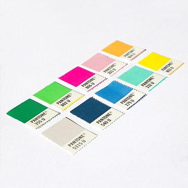 Pantonera Festela. Color palette marca de diseño.