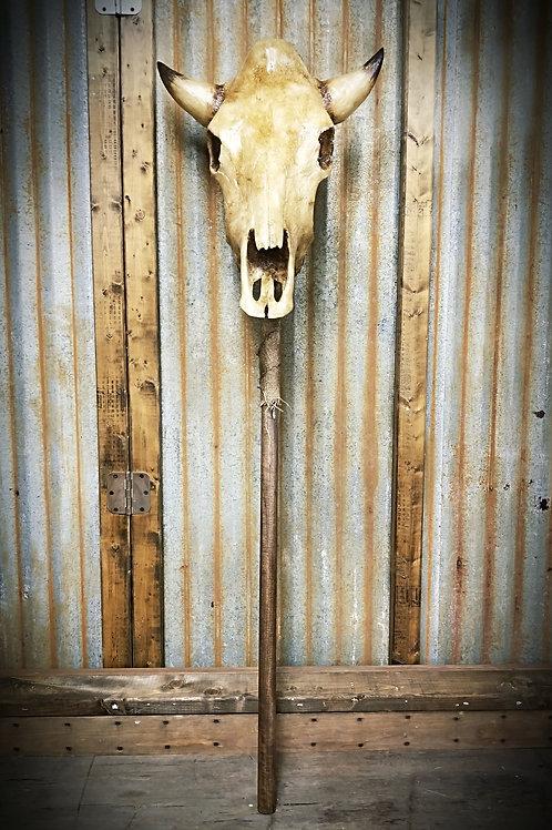 Bull Skull Staff