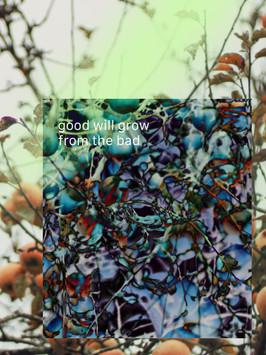 Good Will Grow // Hannah Leishman — Design