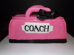 Hot Pink and Black Coach
