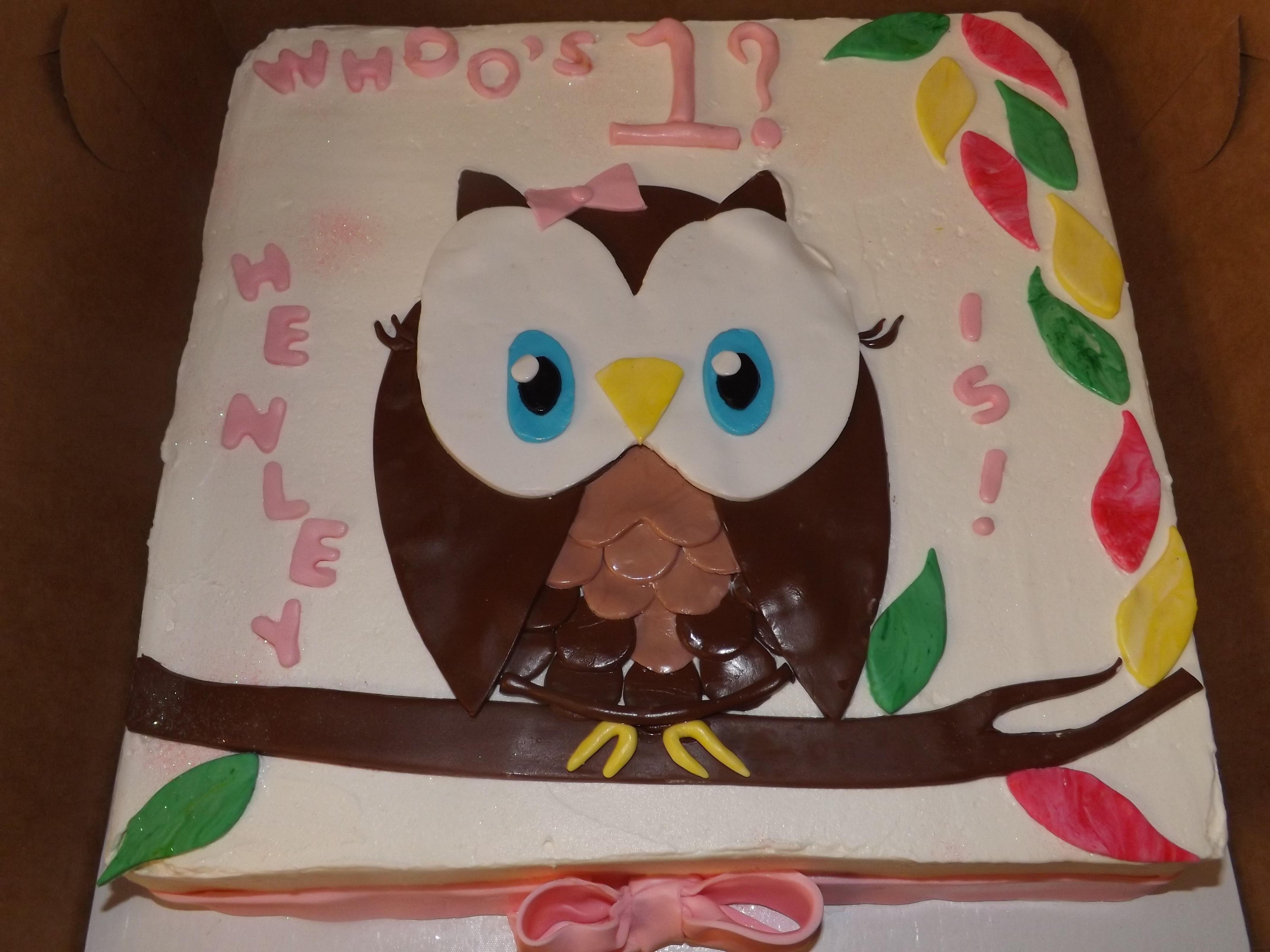 Baby's 1st Owl